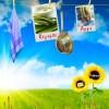 Koch App: Spargel Rezepte zur Spargelsaison 2012